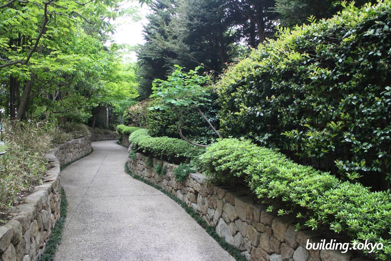 セルリアンタワー裏側にある小道です。緑がとても鮮やかです。渋谷にいる事を忘れそうです。